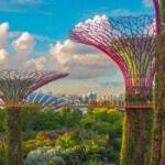 Singapore Landscape Image